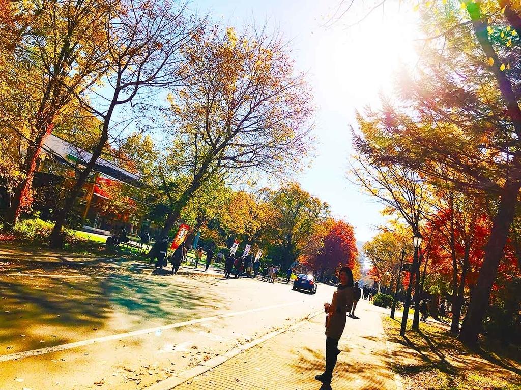 秋の北海道大学のキャンパス【適材適食】小園亜由美(管理栄養士・野菜ソムリエ上級プロ)