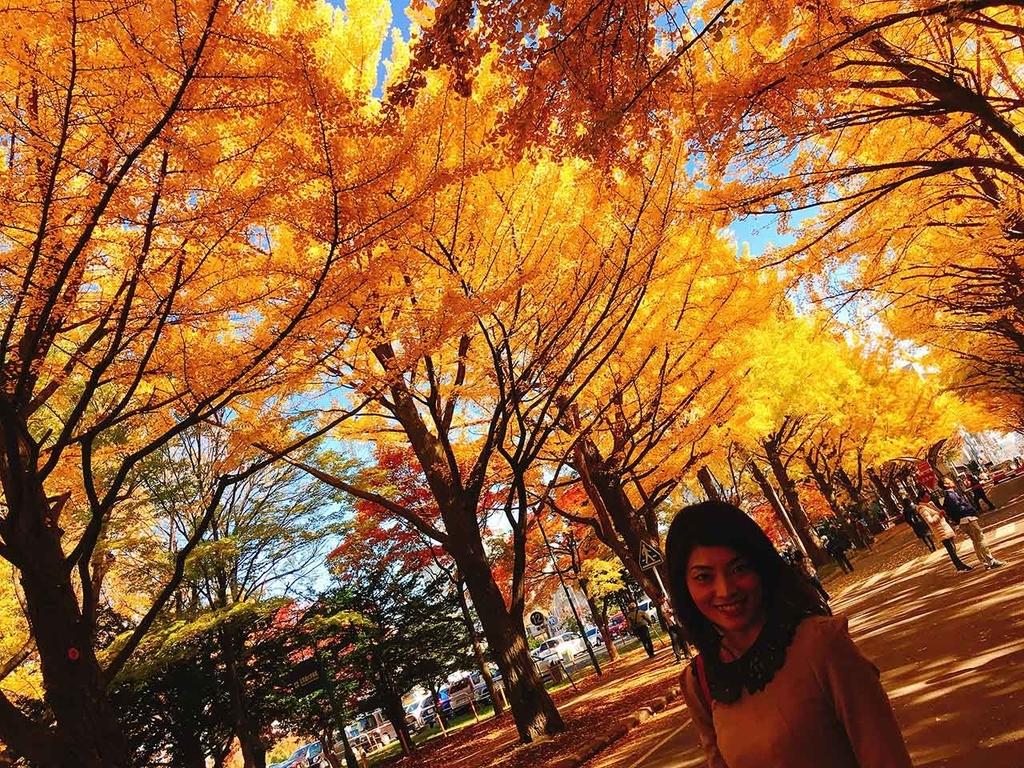 イチョウ並木@北海道大学【適材適食】小園亜由美(管理栄養士・野菜ソムリエ上級プロ)