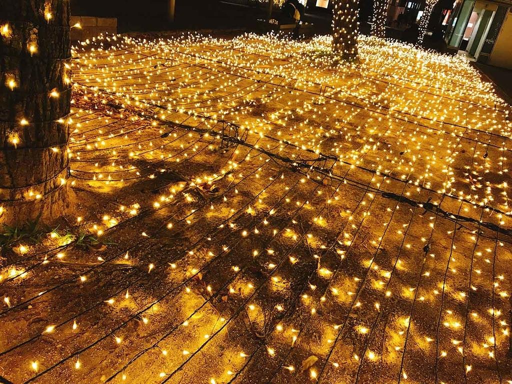 警固公園@「サンタが天神にやってきた」名付けて『クリスマスツリーハンター』2018年福岡・天神の『クリスマスツリー』を集めてみた【適材適食】小園亜由美(管理栄養士・野菜ソムリエ上級プロ)
