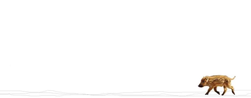 「あけましておめでとうございます」2019年始まりの日。【適材適食】小園亜由美(管理栄養士・野菜ソムリエ上級プロ)