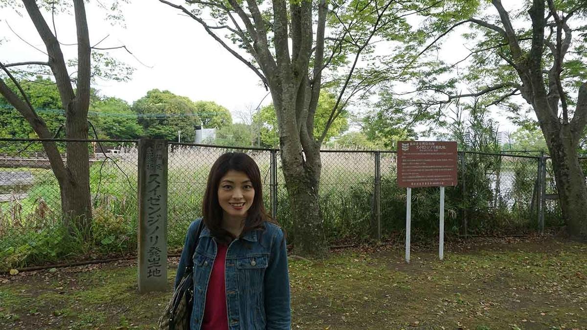 国指定天然記念物スイゼンジノリ発生地@熊本県熊本市中央区