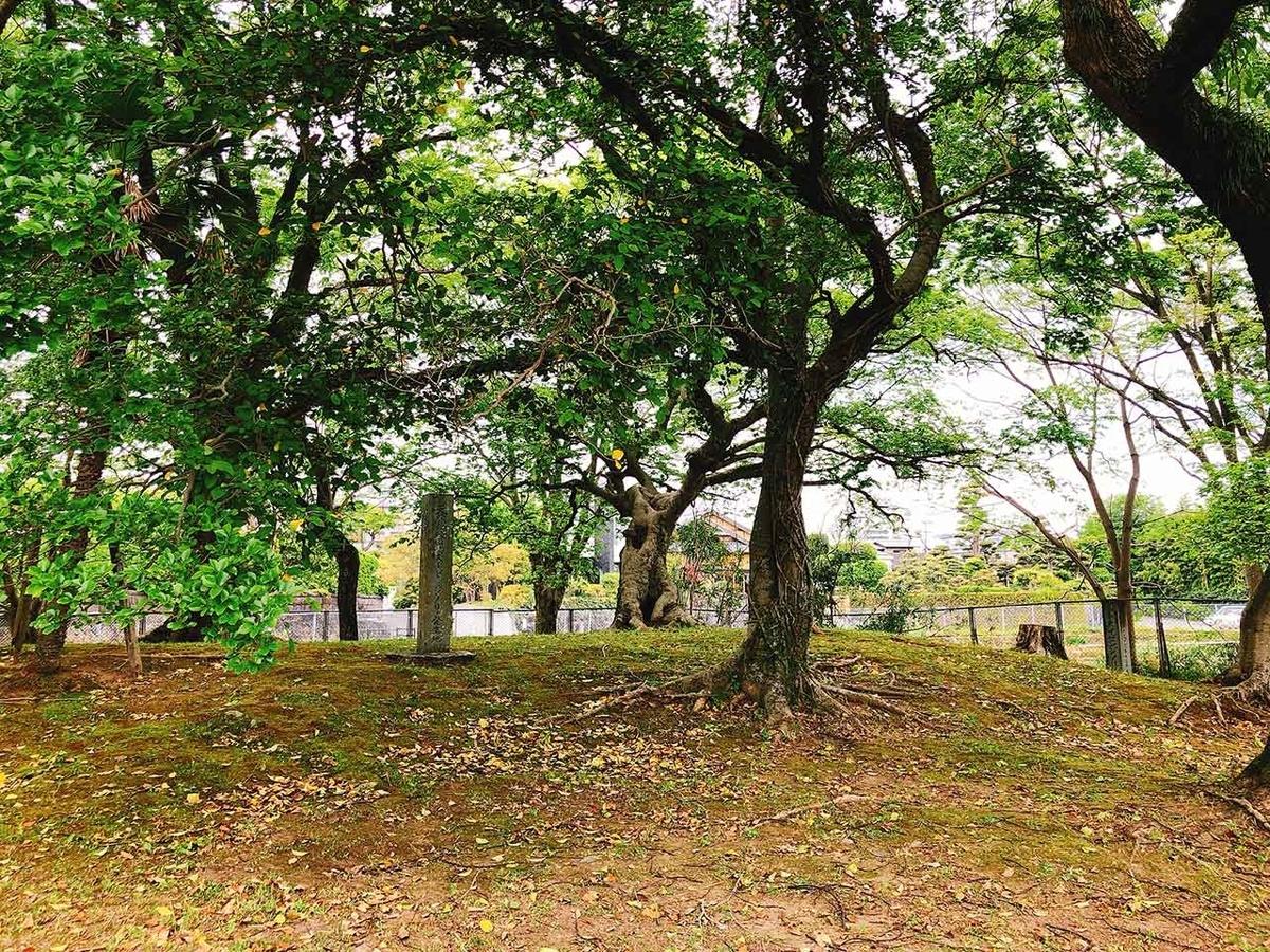 国指定天然記念物「スイゼンジノリ発生地」@熊本県熊本市中央区