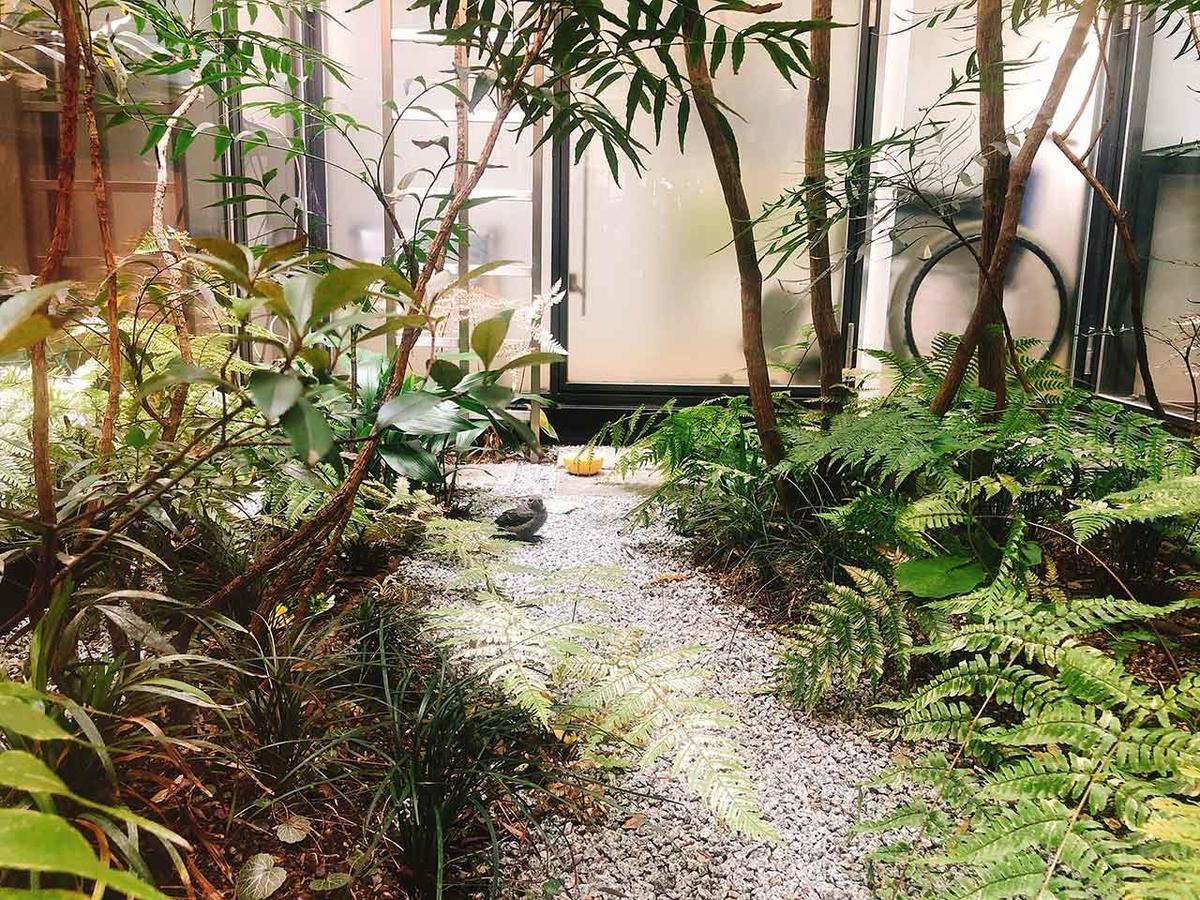 「イソヒヨドリのチーちゃん」姪浜本院の「中庭」にちいさなちいさな訪問者。でも、とても心配…。【適材適食】小園亜由美(管理栄養士・野菜ソムリエ上級プロ)