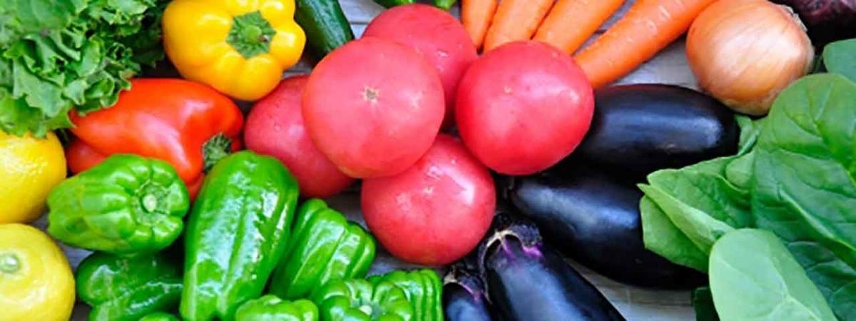 「草食系は健康的な食事スタイル」植物ベースの食事を摂ることで糖尿病のリスクを低減させる【適材適食】小園亜由美(管理栄養士・野菜ソムリエ上級プロ)
