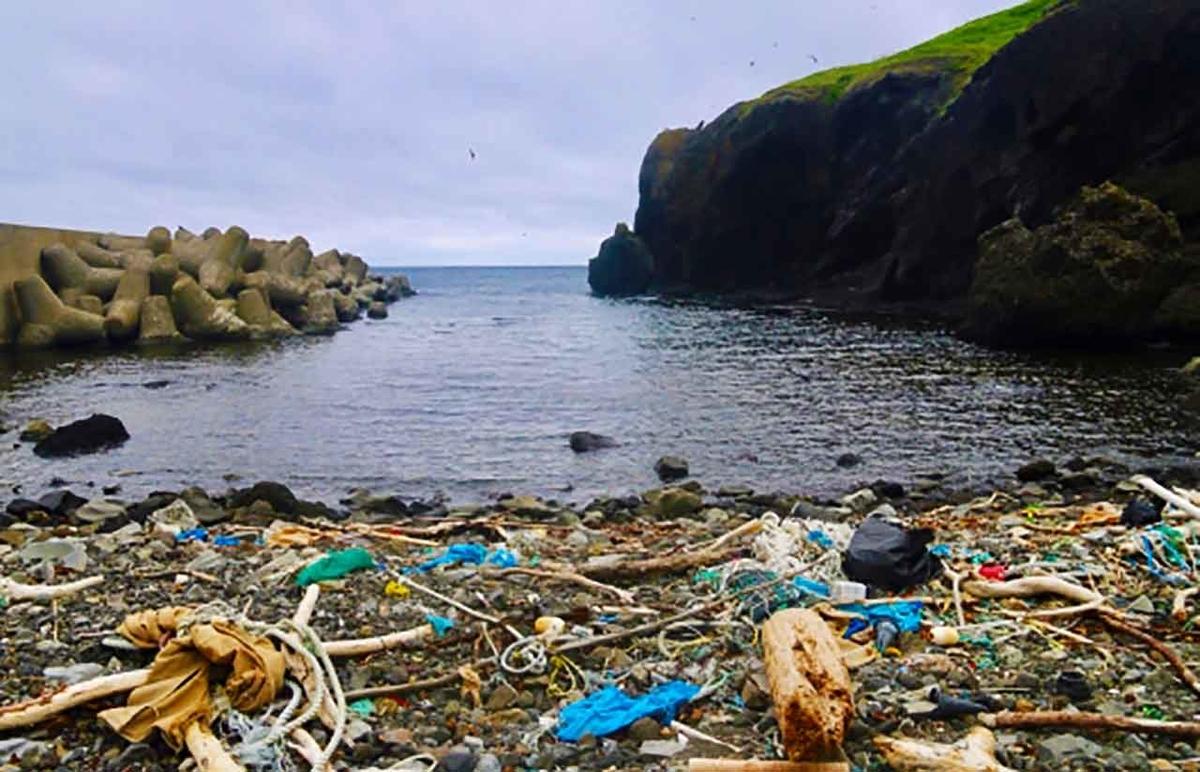 「マイクロプラスチックゴミという危機」他人事ではない!成人ひとり当たり年間2000個が体内にという説も!【適材適食】小園亜由美(管理栄養士・野菜ソムリエ上級プロ)