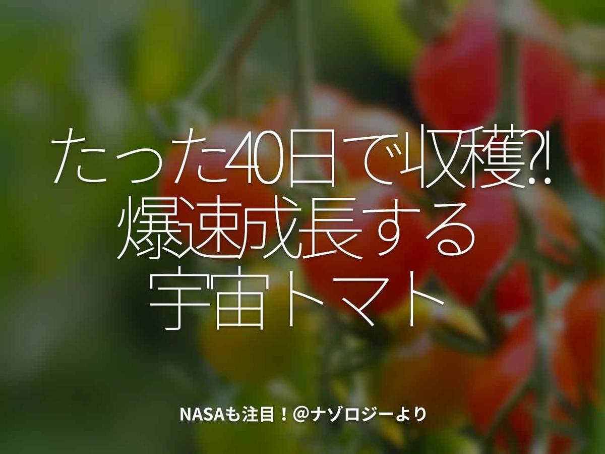 「たった40日で収穫?!爆速成長する宇宙トマト」NASAも注目!@ナゾロジーより【適材適食】小園亜由美(管理栄養士・野菜ソムリエ上級プロ)