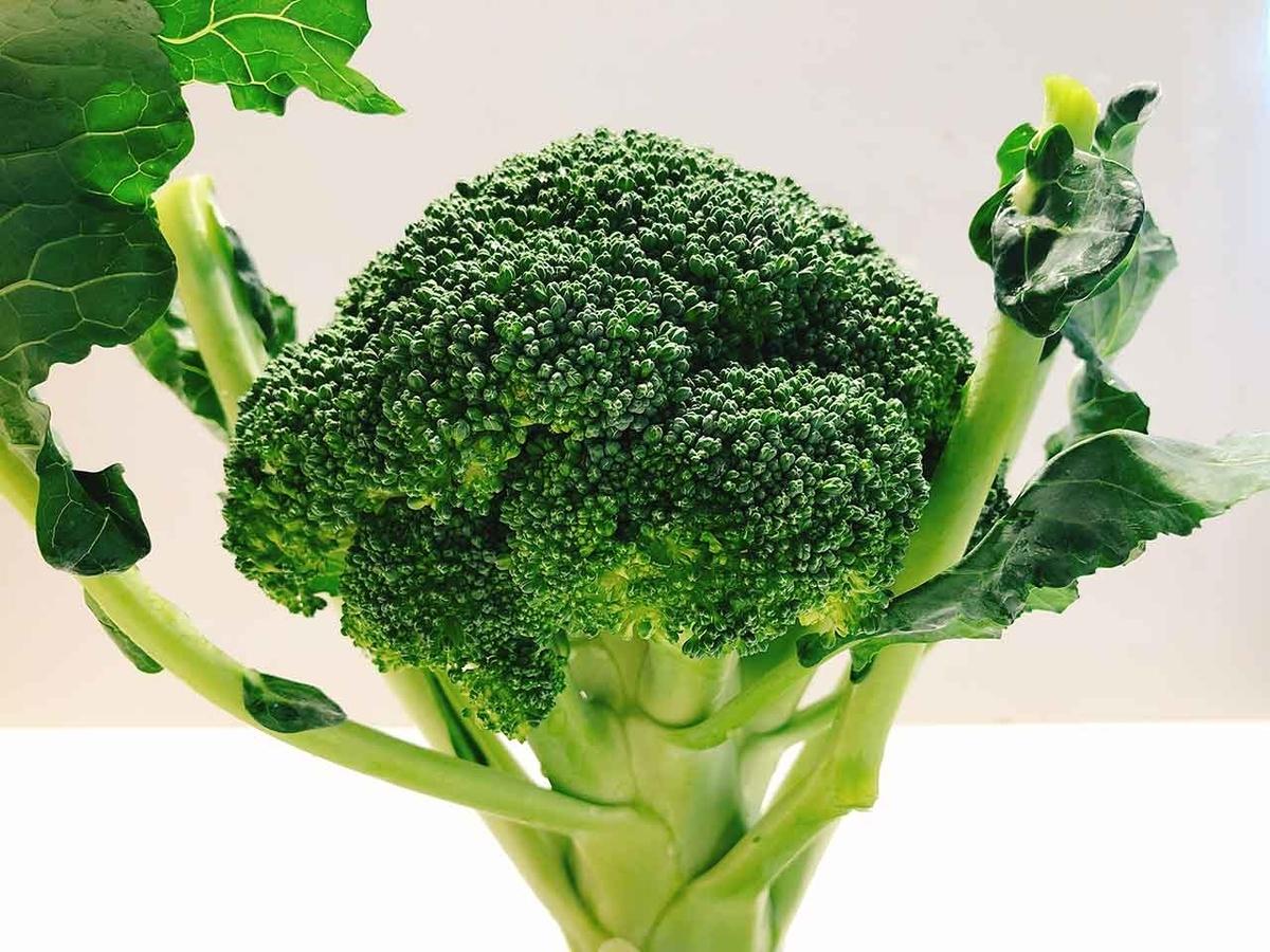 「旬の役菜 1月【ブロッコリー】」今が旬★ 美味しくて+栄養価が高くて+安くて=元気にしてくれる季節の野菜を紹介【適材適食】小園亜由美(管理栄養士・野菜ソムリエ上級プロ)