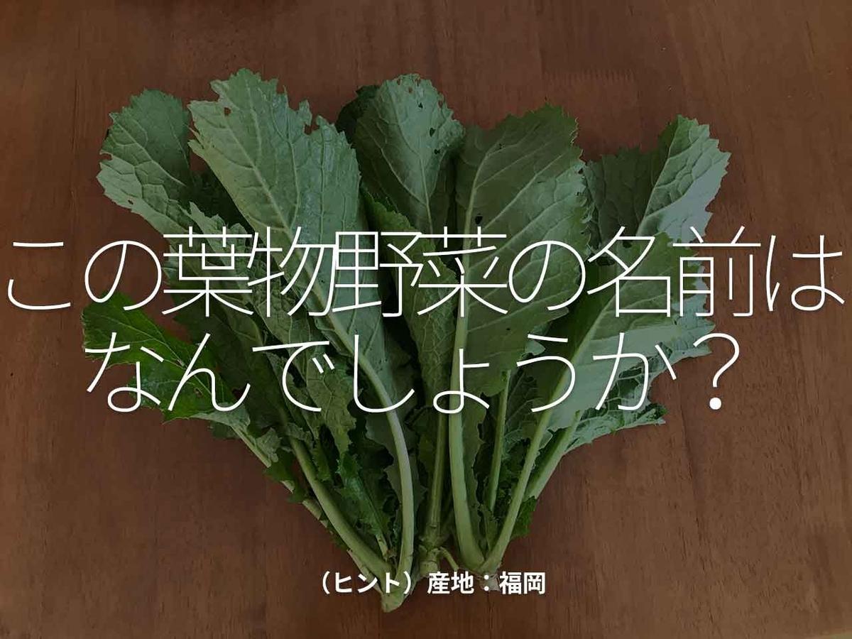 「この葉物野菜の名前はなんでしょうか?」(ヒント)産地:福岡【適材適食】小園亜由美(管理栄養士・野菜ソムリエ上級プロ)