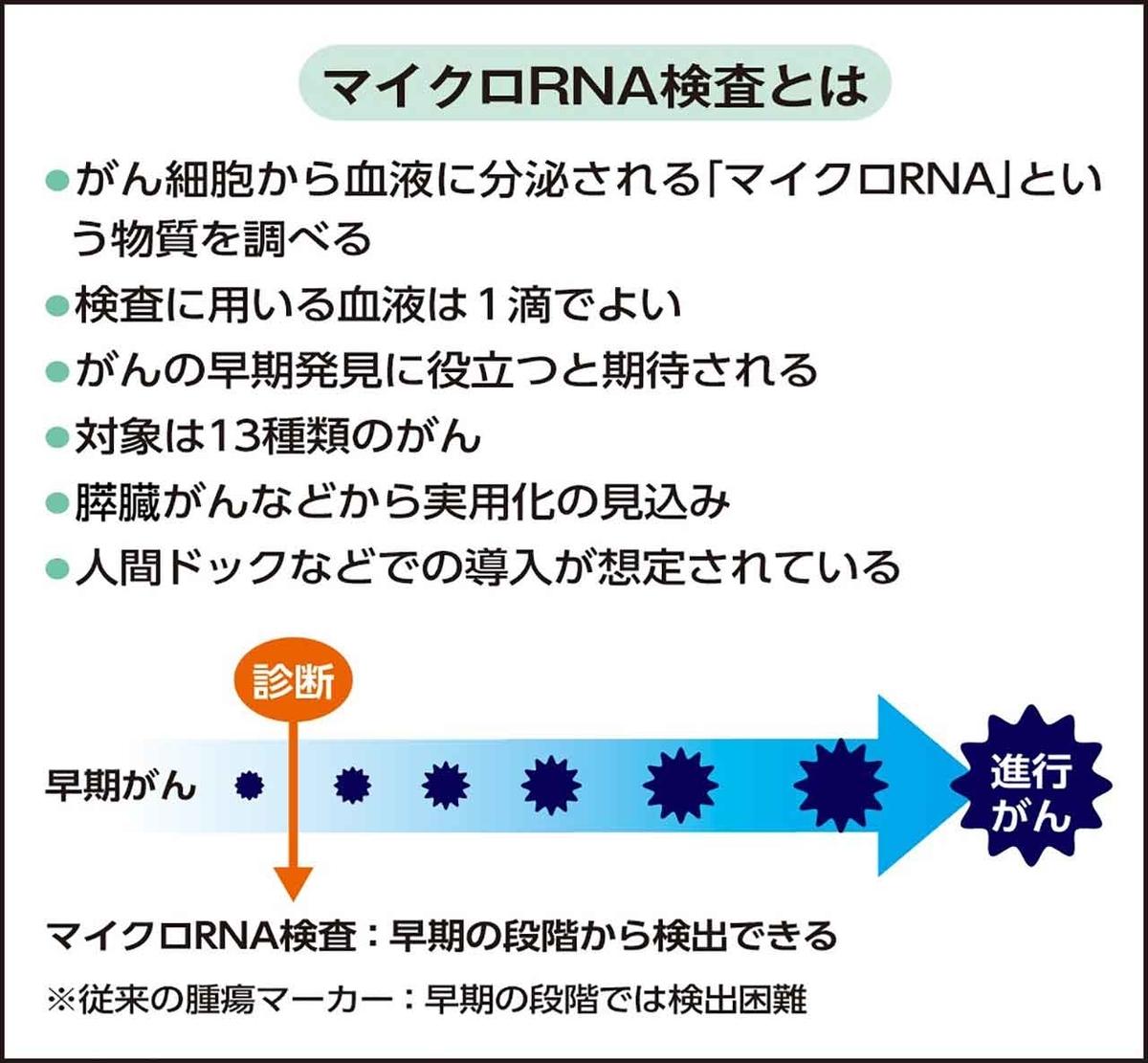 f:id:kozonoayumi2018:20200113183649j:plain