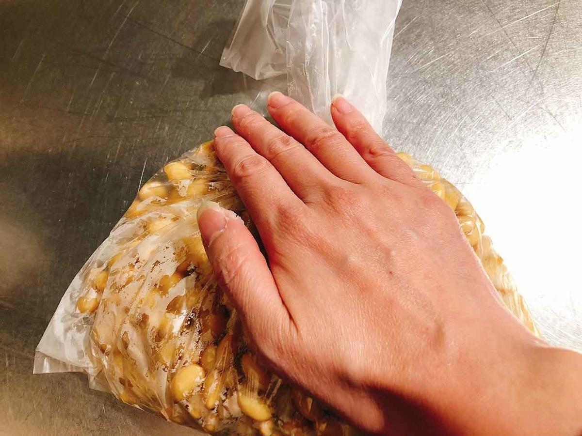 「♪ド・ミ・ソ♪ ど『味噌』」自分で味噌を作ってみた!手作りミソにチャレンジ♪【適材適食】小園亜由美(管理栄養士・野菜ソムリエ上級プロ)
