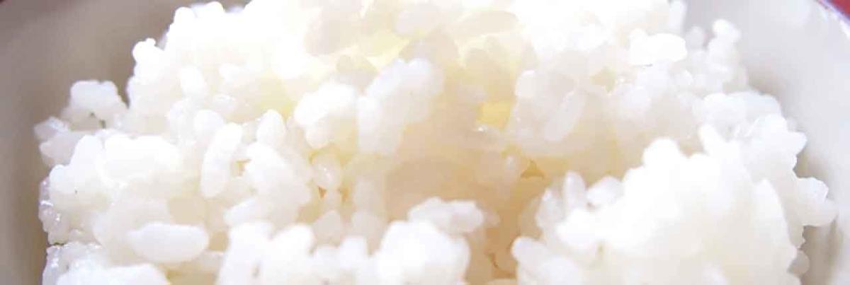 「葉っぱしか食べないゴリラはどうしてムキムキなんだと思う?(再考篇)」草食のゴリラが筋肉質な理由を再び考えてみる★次へ続く日記第6話★完結【適材適食】小園亜由美(管理栄養士・野菜ソムリエ上級プロ)