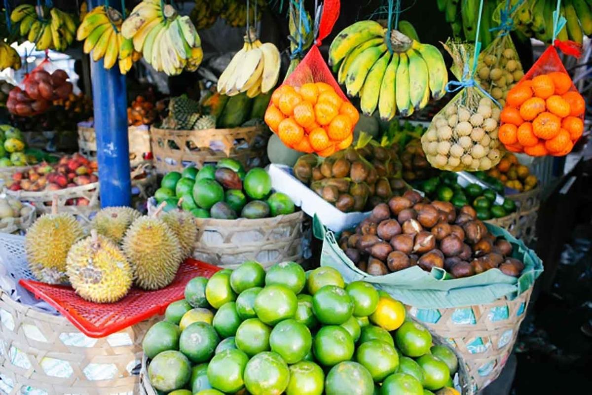 「果物を食べると膵臓がんのリスクが抑えられる?」国立がん研究センターなどの多目的コホート(JPHC)研究グループの研究から【適材適食】小園亜由美(管理栄養士・野菜ソムリエ上級プロ)
