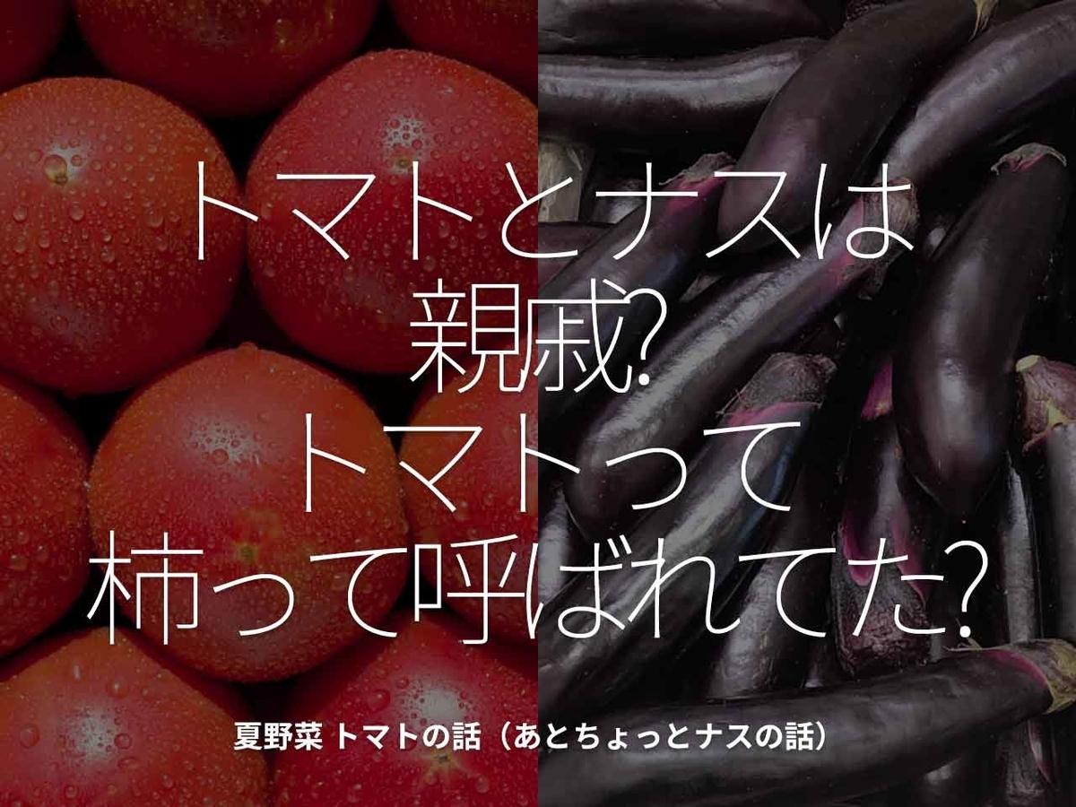 「トマトとナスは親戚?トマトって柿って呼ばれてた?」夏野菜 トマトの話(あとちょっとナスの話)【適材適食】小園亜由美(管理栄養士・野菜ソムリエ上級プロ)