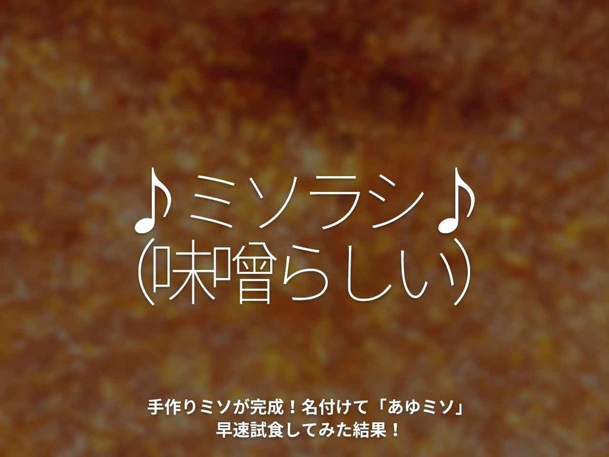 「♪ミソラシ♪(味噌らしい)」手作りミソが完成!名付けて「あゆミソ」早速試食してみた結果!【適材適食】小園亜由美(管理栄養士・野菜ソムリエ上級プロ)