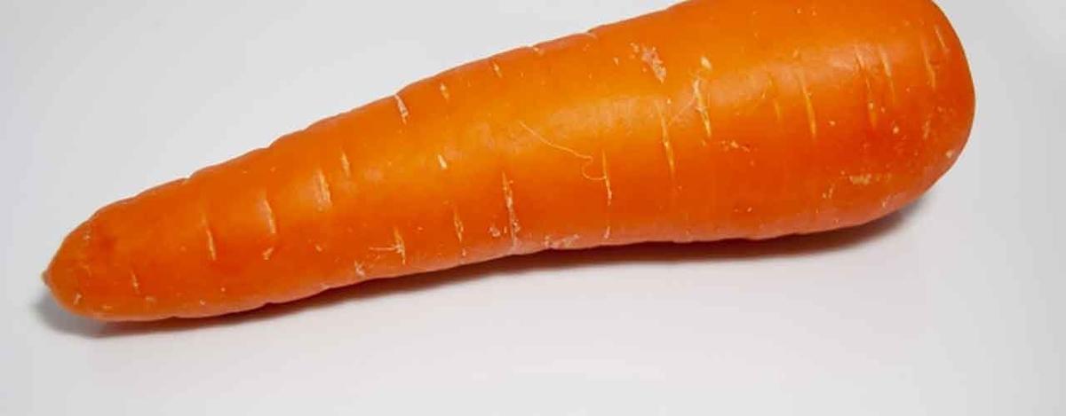 「寒い冬に美味しくなる野菜は意外と多いんです★」12月に旬を迎える野菜【適材適食】小園亜由美(管理栄養士・野菜ソムリエ上級プロ)