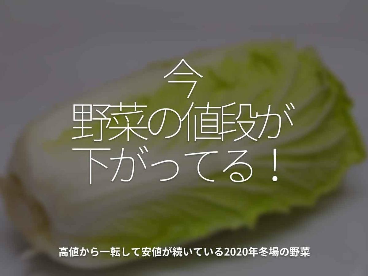 「今、野菜の値段が下がってる!」高値から一転して安値が続いている2020年冬場の野菜【適材適食】小園亜由美(管理栄養士・野菜ソムリエ上級プロ)