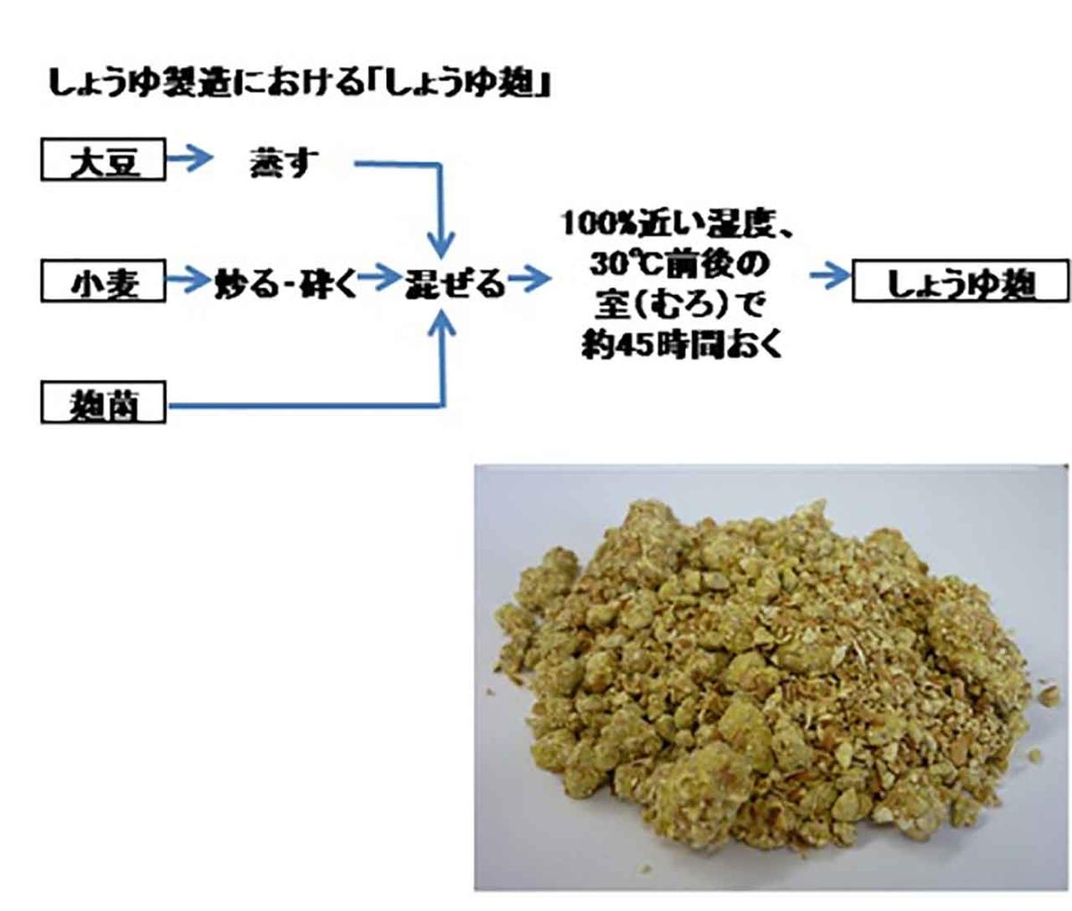 f:id:kozonoayumi2018:20210609201948j:plain