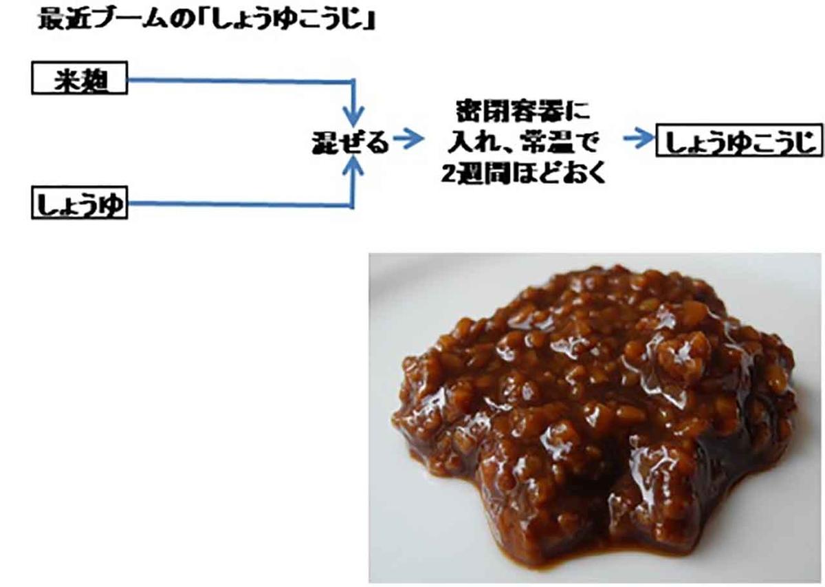 f:id:kozonoayumi2018:20210609201957j:plain