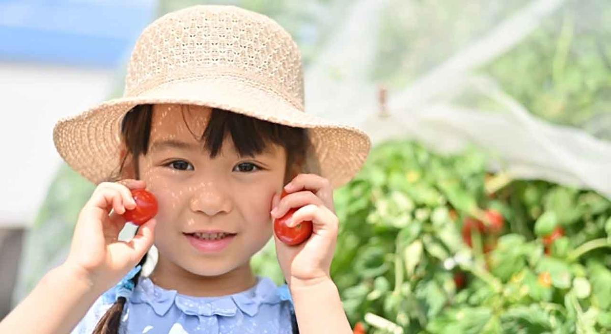 「今年も美味しいトマトジュースをゲットしました!」カゴメトマトジュースプレミアム2021【適材適食】小園亜由美(管理栄養士・野菜ソムリエ上級プロ)糖尿病専門・甲状腺専門クリニック勤務@福岡姪浜・福岡天神