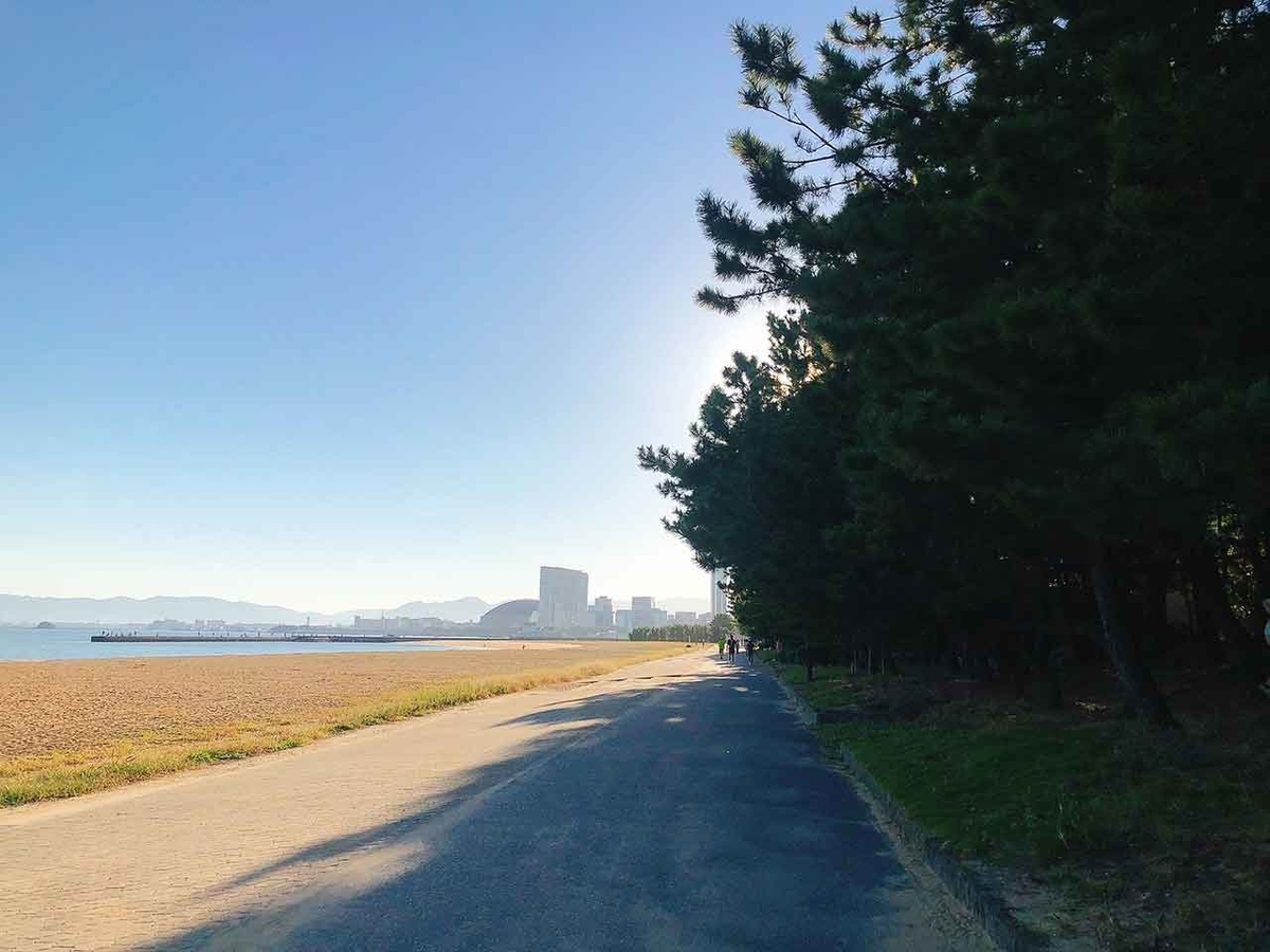 「早朝ウォーキング継続中」今朝も海岸通りコースを歩いてきました。【適材適食】小園亜由美(管理栄養士・野菜ソムリエ上級プロ)糖尿病専門・甲状腺専門クリニック勤務@福岡姪浜・福岡天神