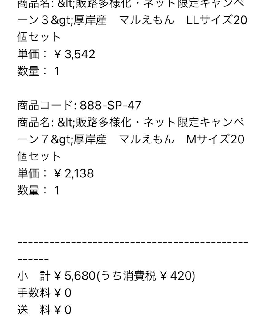 f:id:kozumakun:20210604140029j:image