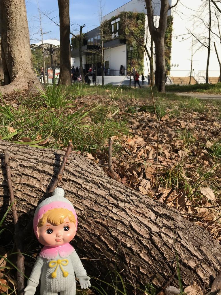 公園から見たTTホールとチャーミーちゃん