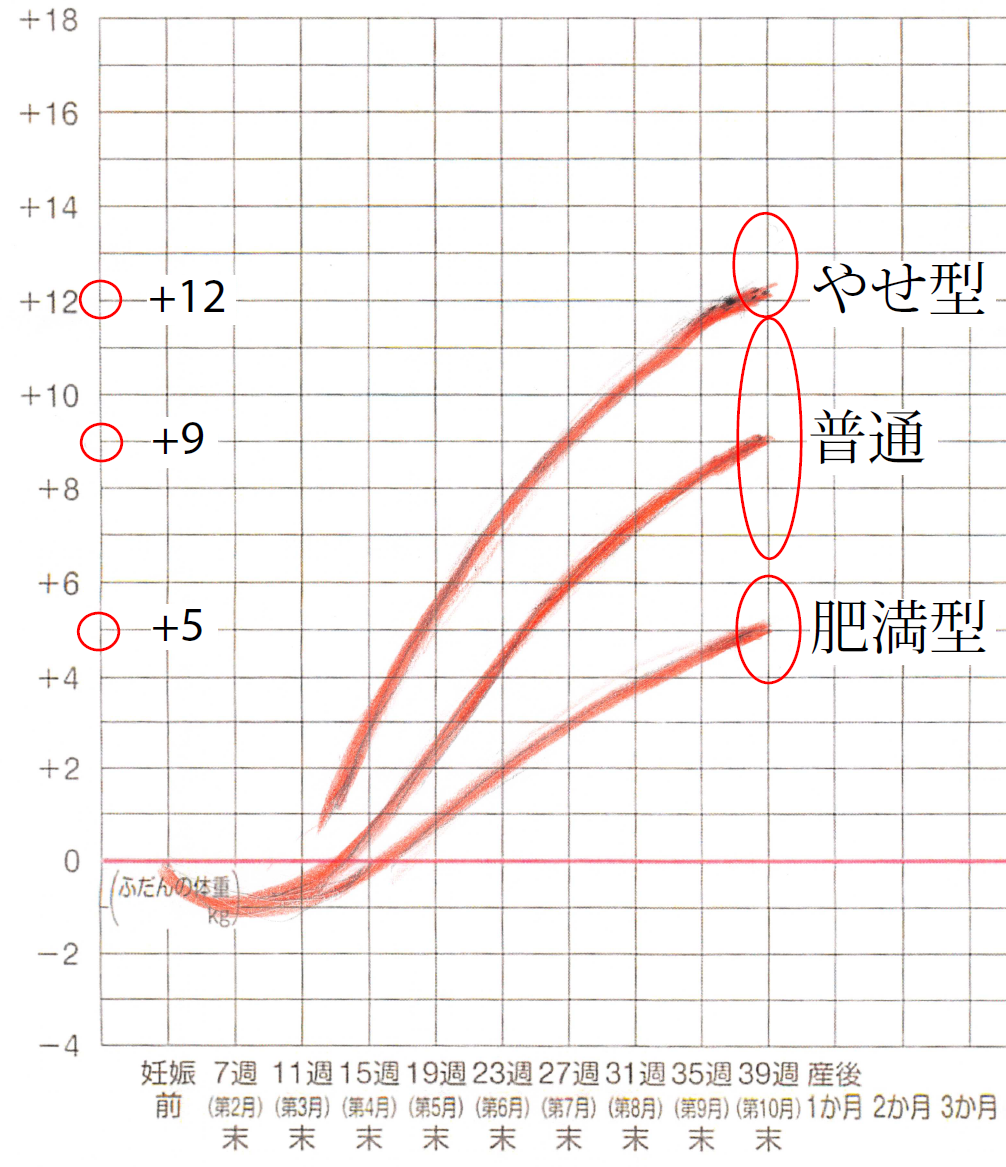 妊娠途中経過は、次のグラフを参考にしてください。