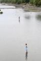 京都新聞写真コンテスト『賀茂川の水遊び』