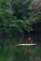 京都新聞写真コンテスト『湖面喫茶』