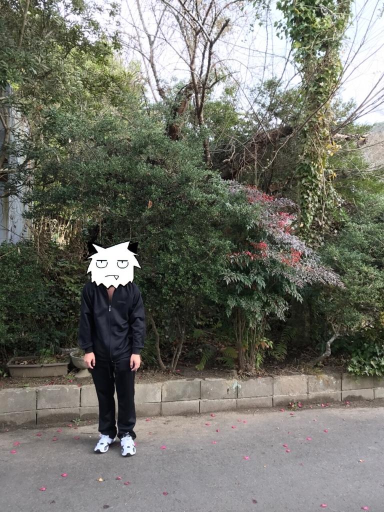 f:id:krtjinbei:20180205232512j:plain