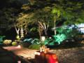 ライトアップされた庭にお月見セット