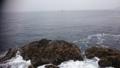錦 鰹平瀬 カツオ 西の沖向き