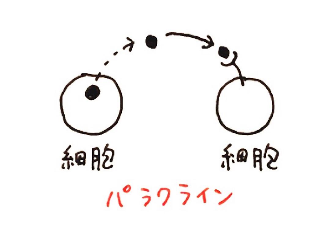 f:id:kshinagawa:20161009082235j:image
