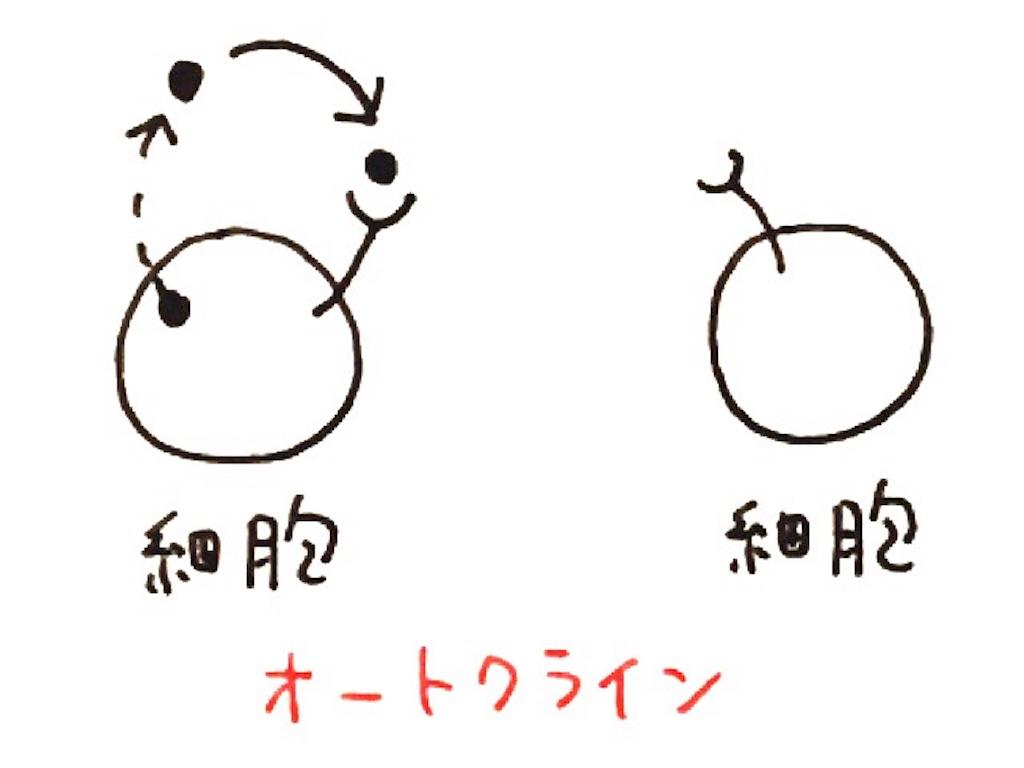 f:id:kshinagawa:20161009082239j:image