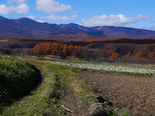f:id:ksrer:20121110123029j:image