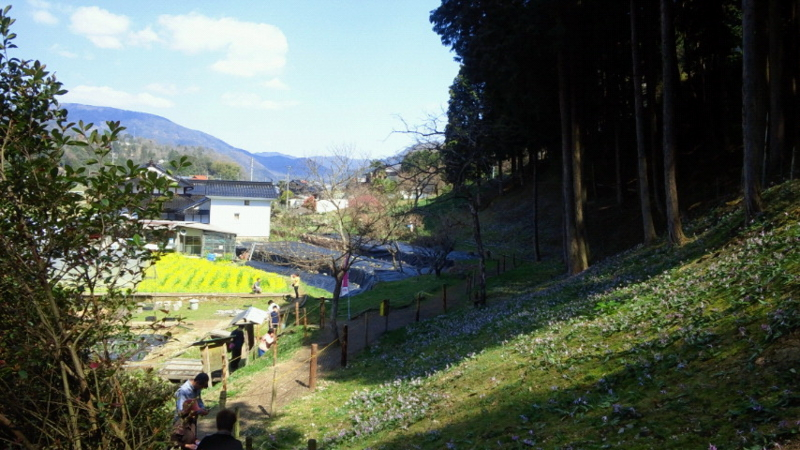 f:id:ksrmx_in_japan:20120414140500j:image:w360