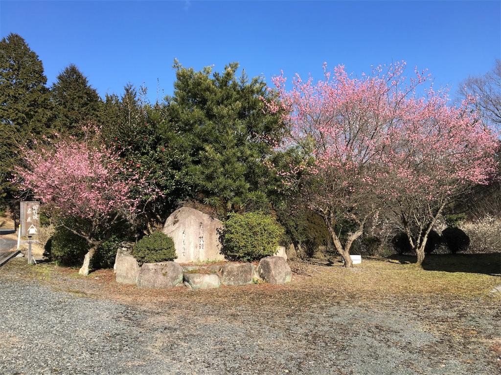 f:id:ktakagaki:20170303181351j:image