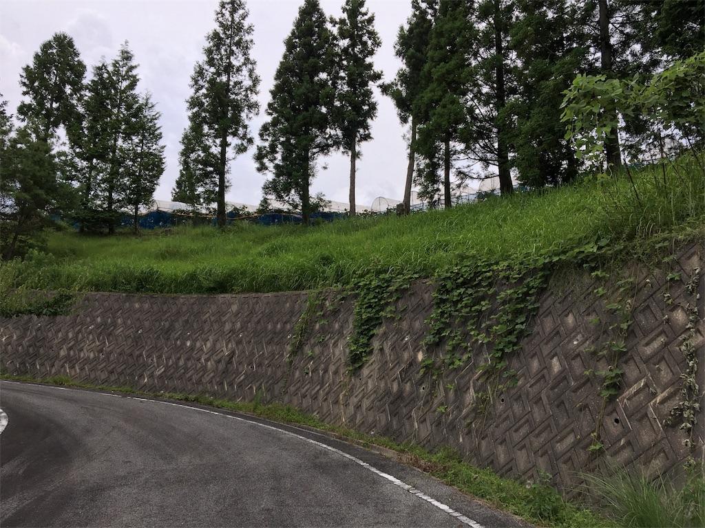 f:id:ktakagaki:20170822175652j:image