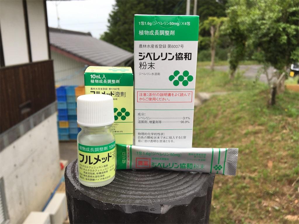 f:id:ktakagaki:20180621184434j:image