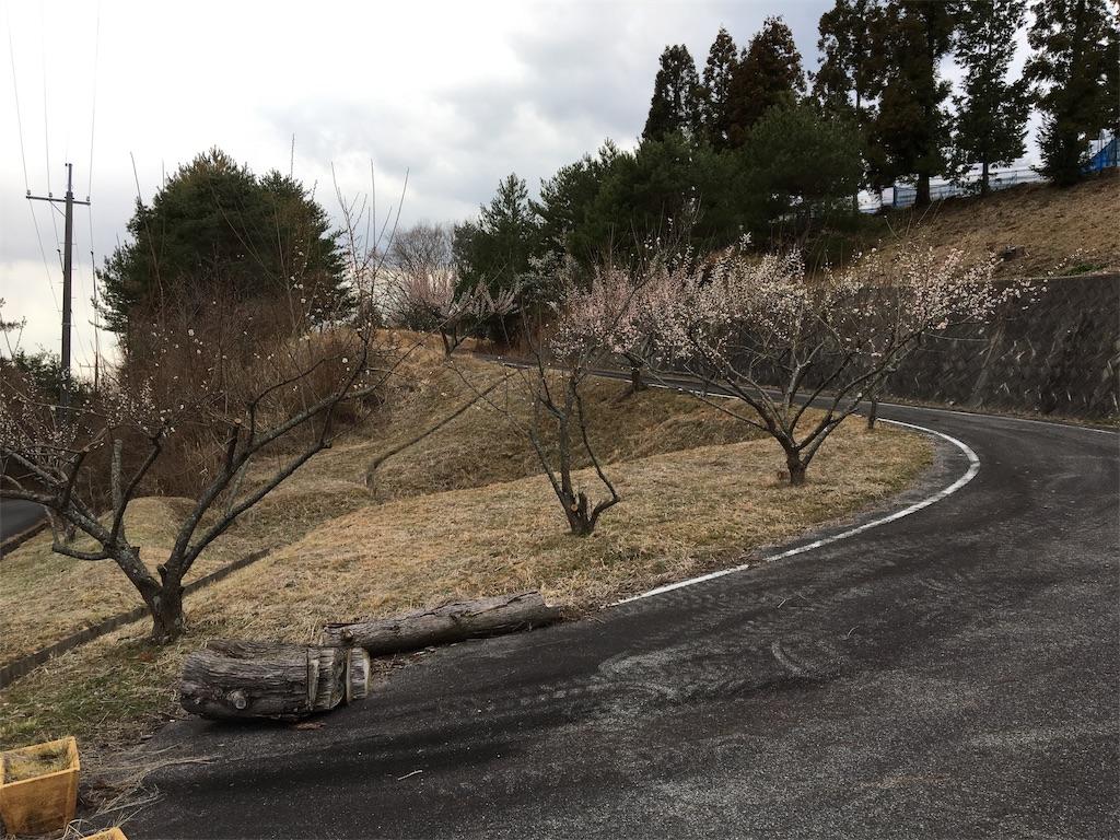 f:id:ktakagaki:20190314195415j:image