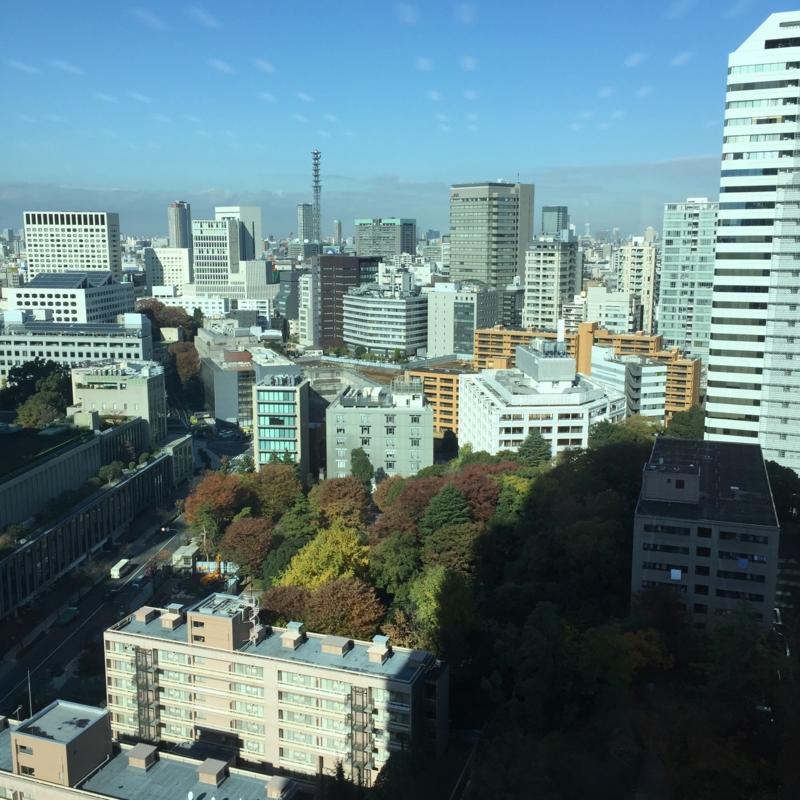 17階からの景色