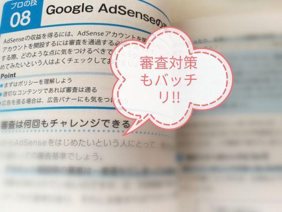 GoogleAdsenseの審査対策
