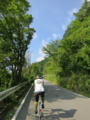 [金時山周辺林道サイク]