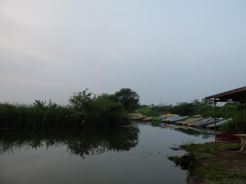 [早朝の印旛沼へ]