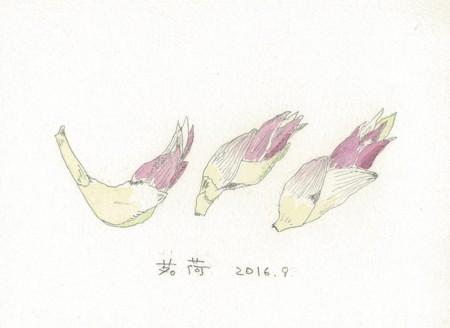 f:id:ktoshi3:20161211150805j:image