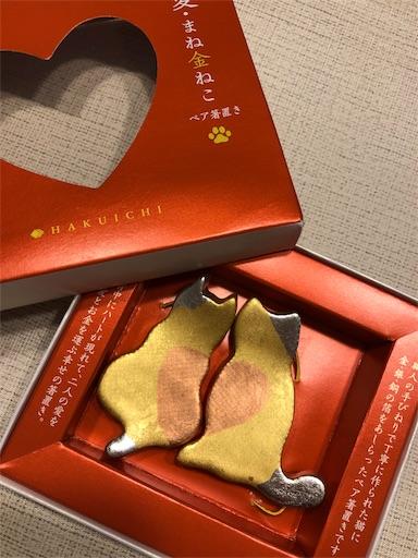 f:id:ku-cha-yuki:20201112013001j:image