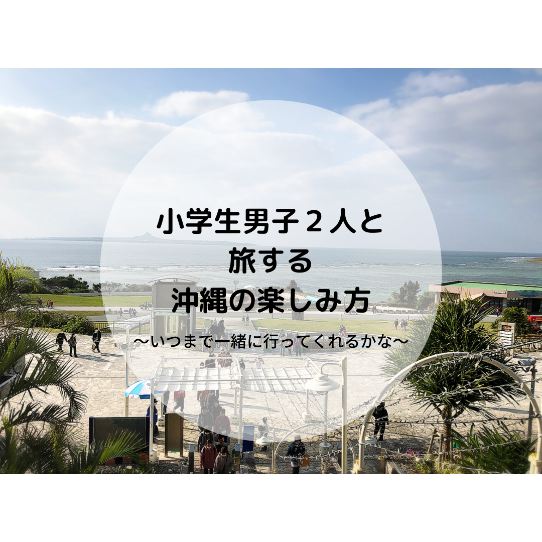 f:id:ku-chan5649:20200212144104p:plain