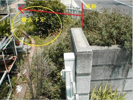 f:id:kubataasisuto:20210128171938p:plain