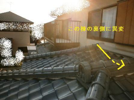 f:id:kubataasisuto:20210201141404p:plain
