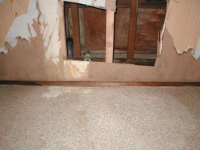 (屋内水漏れ修理)05濾水部分の自然乾燥後.JPG